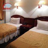 Grand Bukhara Hotel (5)