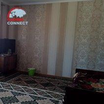 Gulnora Guesthouse hotel in Tashkent 12