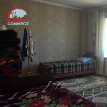 Gulnora Guesthouse hotel in Tashkent 5