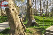 Chor Chinor Garden in Urgut