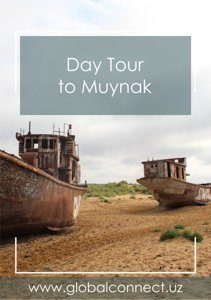 Day tour to Muynak
